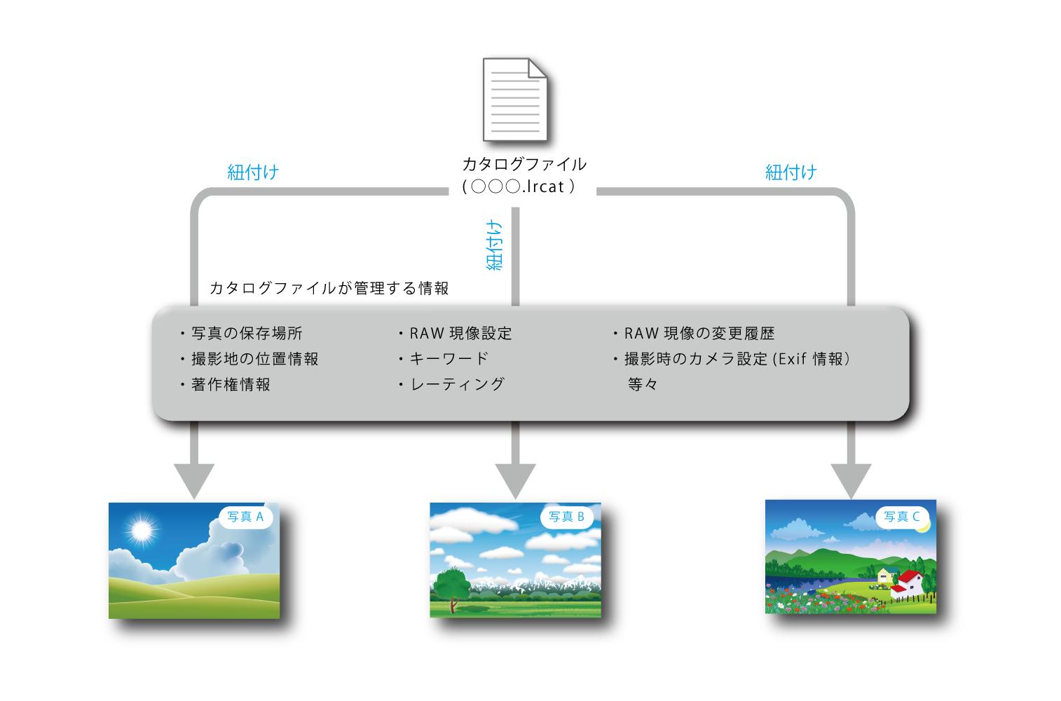 カタログファイルの仕組み