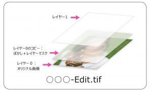 残ったファイル-Case2