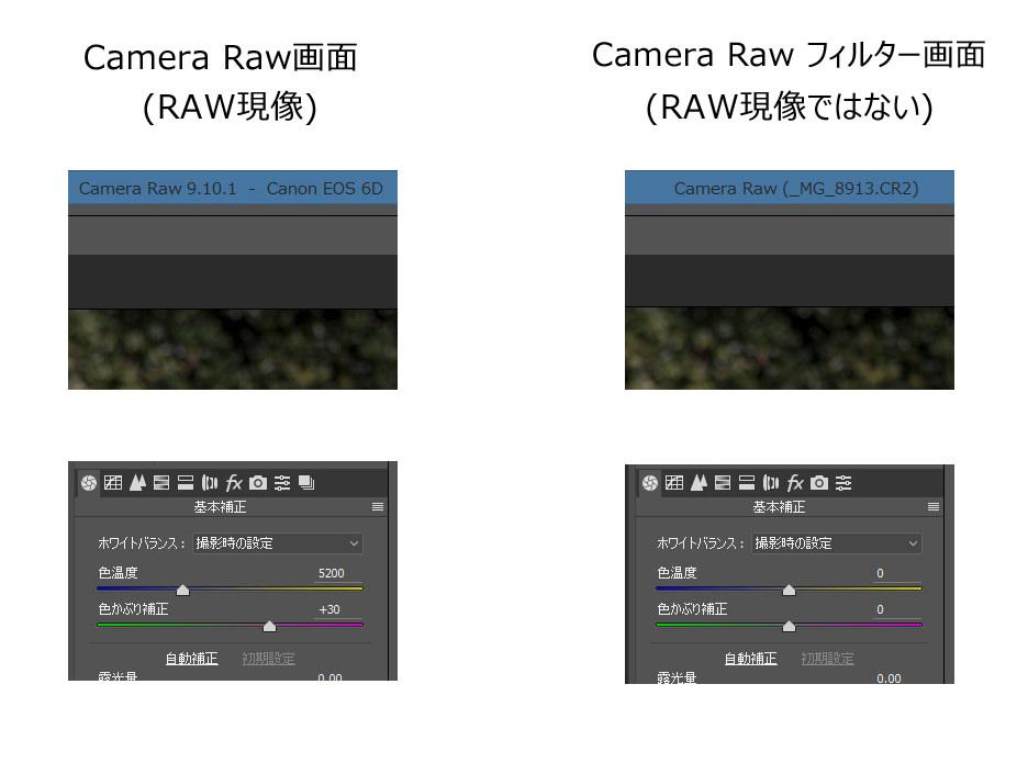 画面比較-Camera_Raw_vs_Camera_Raw_フィルター