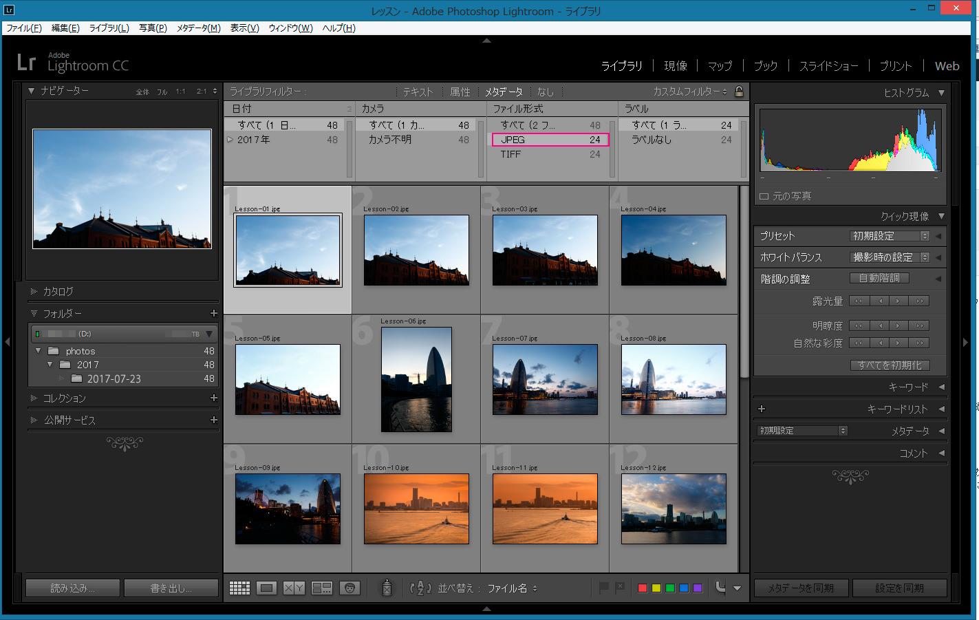 グリッド表示-メタデータ-ファイル形式-JPEG