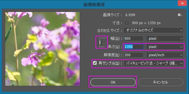 Photoshop画像解像度ダイアログ2