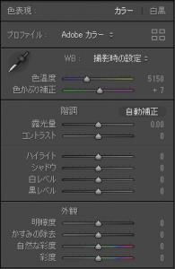 基本補正パネル_LR_8.1