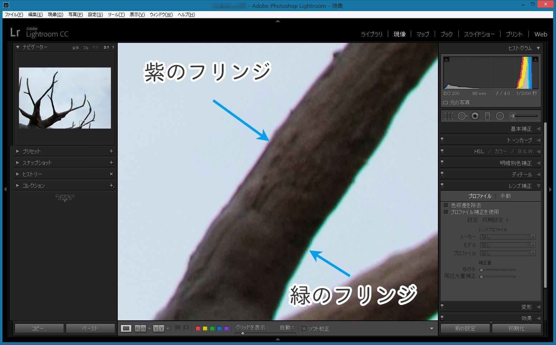 フリンジ-樹木-Before