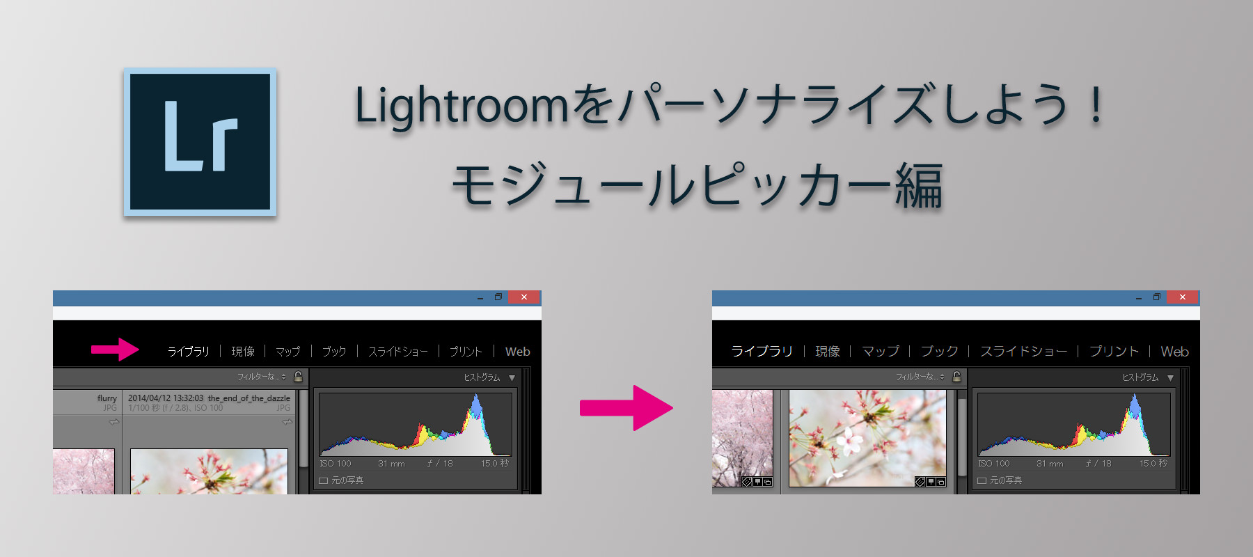 Personalize_Lightroom_Module_Picker-Main