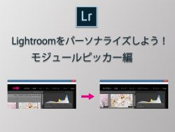 Personalize_Lightroom_Module_Picker-fefatured