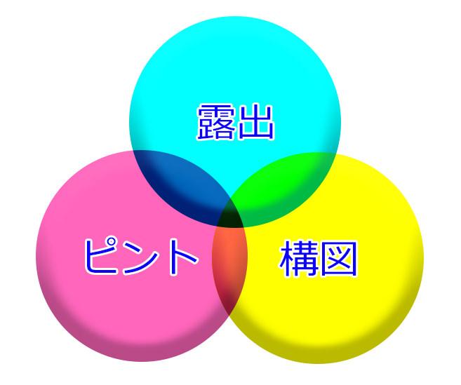 露出-ピント-構図