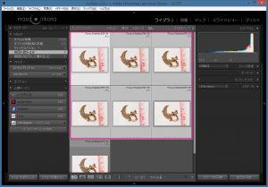 Focus-Stacking-Lightroom画面