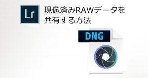 現像済みRAWデータを共有する方法-OGP