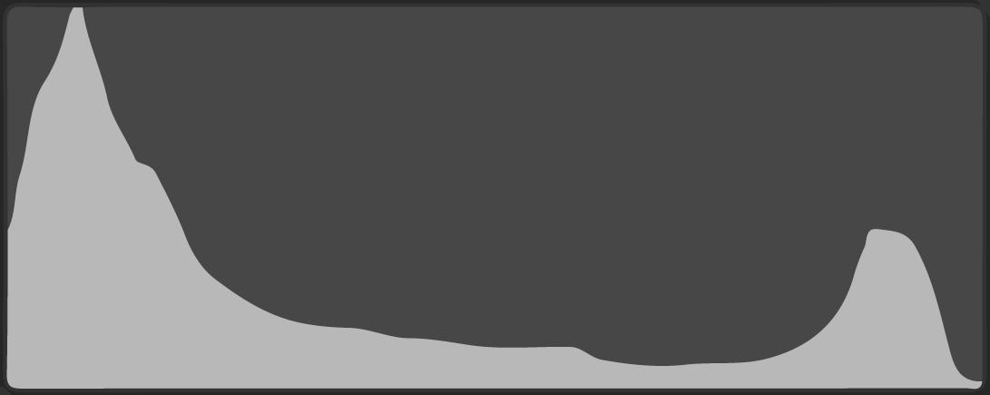 ヒストグラム-Tight