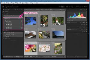 コレクション画面-フォルダーパネル-階層の表示