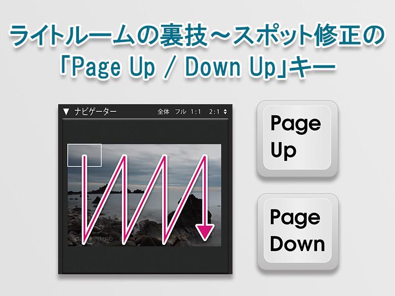 ライトルームの裏技:スポット修正の「Page Up/ Page Down」キー