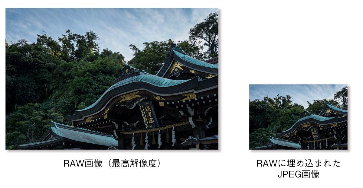サイズ比較_RAW_and_埋め込みJPEG